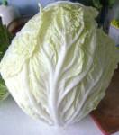 овощи 003